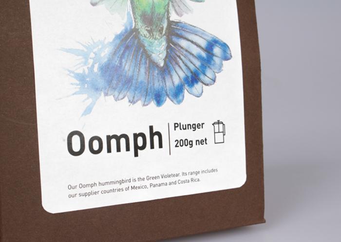 Hummingbird 8