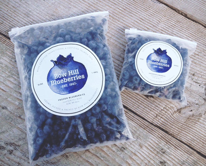 Bow Hill Blueberries2