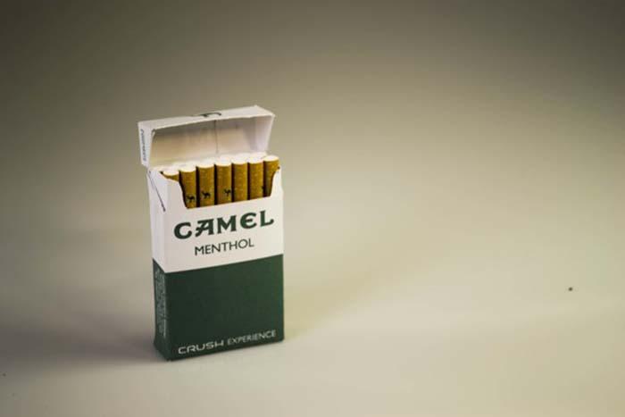 Camel Menthol2