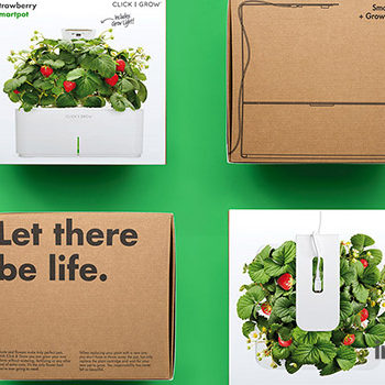 Click and Grow Strawberry Smartpot