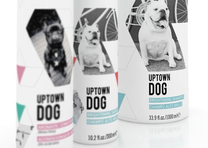 Uptown Dog4