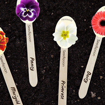 Seedspoon