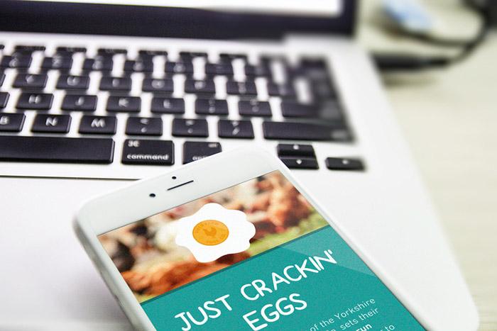 Field Farm Eggs5