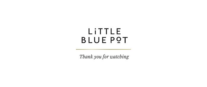 LITTLE BLUE POT12