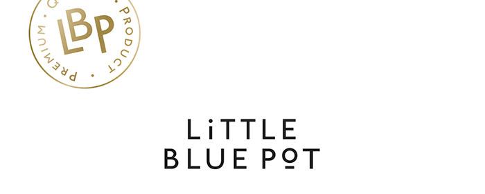 LITTLE BLUE POT2
