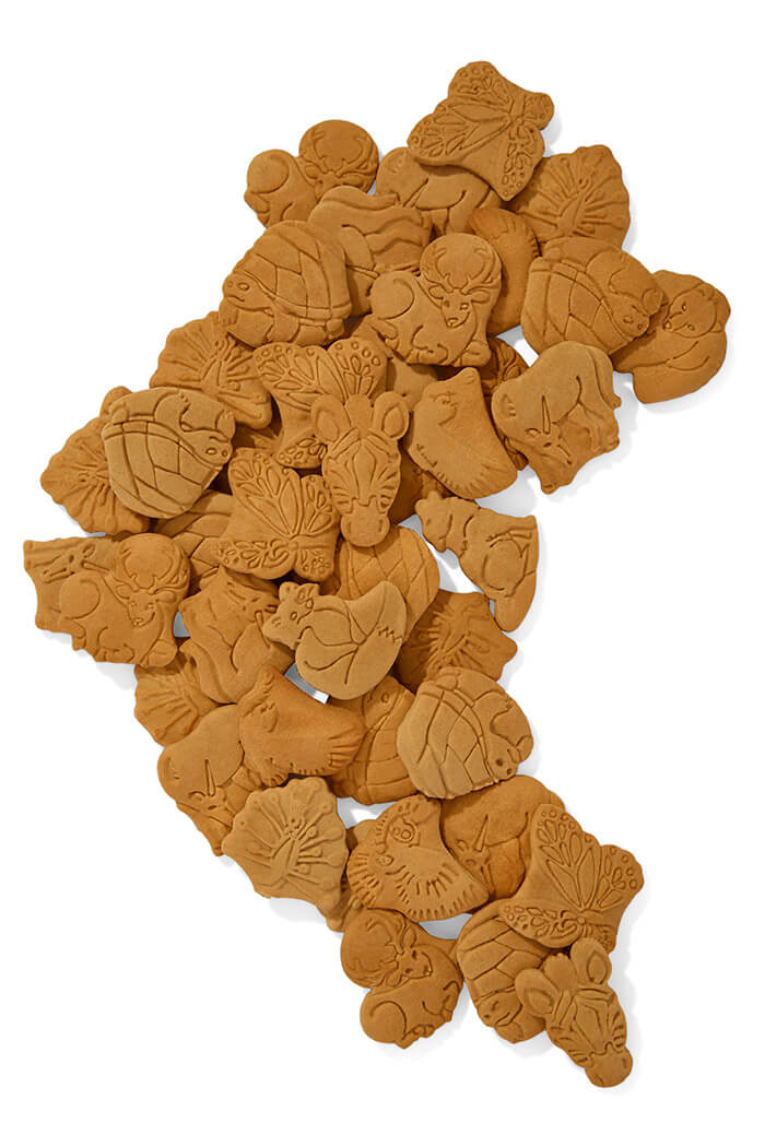 ZEBRA Biscuits4