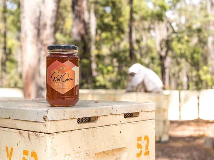 Harvest Road Honey 3