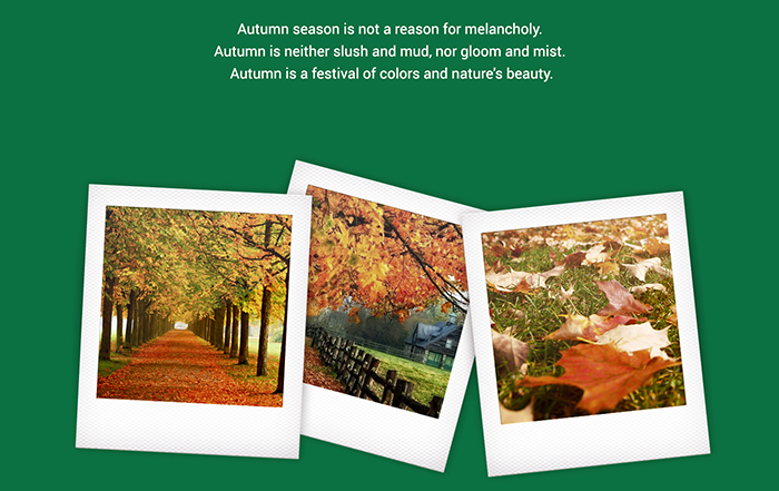 starbucks-presentation-2-real-autumn