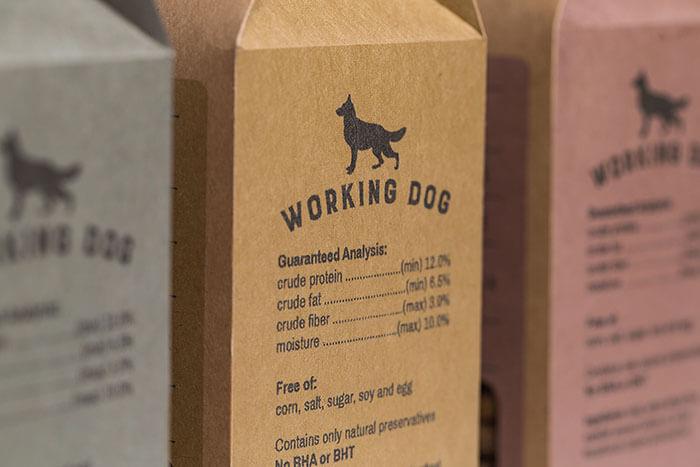 Working Dog 4
